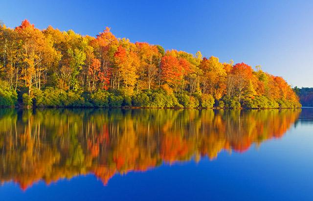 Hình ảnh vé máy bay đi Mỹ khám phá mùa thu rực rỡ