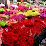 Chiêm ngưỡng 10 chợ hoa rực rỡ nhất thế giới