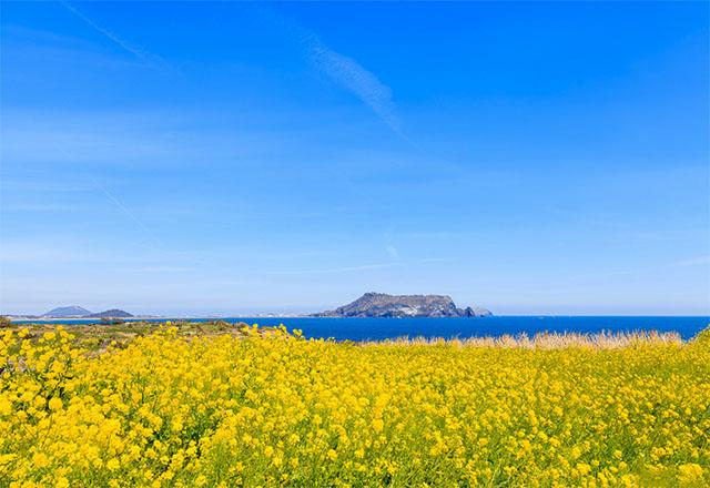 Hình ảnh những điểm du lịch quốc tế tuyệt vời nhất mùa Tết