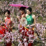 Cách đón Tết Nguyên Đán đặc biệt của người Trung Quốc