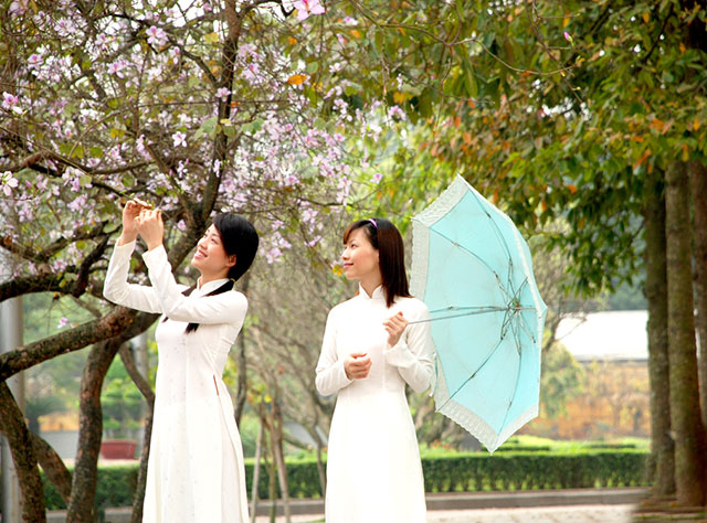 Hình ảnh Hà Nội rực rỡ sắc màu lúc giao mùa