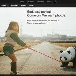 Sự thật đằng sau bức ảnh thông báo lỗi của Flickr