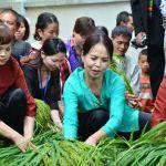 Vé máy bay giá rẻ đi Hà Nội tham gia lễ hội Cốm Mễ Trì