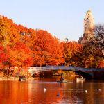 Vé máy bay chiêm ngưỡng mùa thu lãng mạn ở Hoa Kỳ
