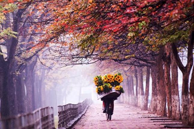Khoảng bình yên của mùa xuân Hà Nội